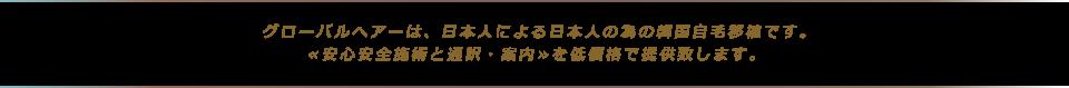 グローバルヘアーは、日本人による日本人の為の韓国自毛移植です。≪安心安全施術と通訳・案内≫を低価格で提供致します。